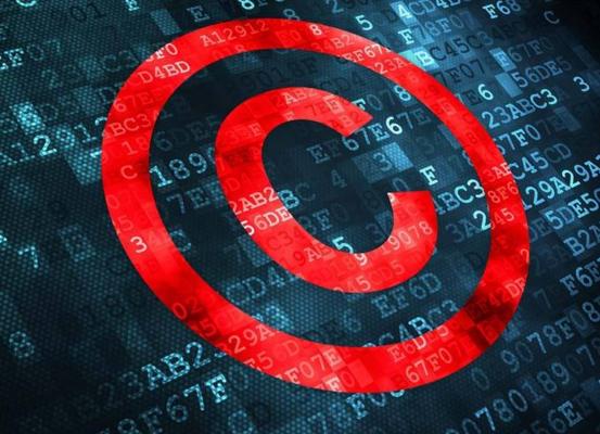 软件著作权保护